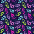 Tropical summer palm tree jungle leaf pattern Royalty Free Stock Photo