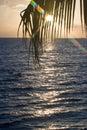 Tropical sun rise Royalty Free Stock Photo