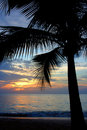 Tropical Sundown Royalty Free Stock Photography