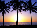 Tropical Sunset 1.5 Royalty Free Stock Photography