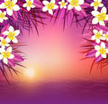 Tropical sunset, flowers and sea. Royalty Free Stock Photo