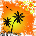 Tropical sunset illustration in white grunge frame Royalty Free Stock Images