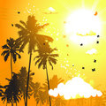 Tropical sunset, palm trees Royalty Free Stock Photos
