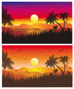 Tropical Sunset with Palms Stock Photos