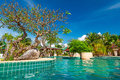 Tropical swimming pool in Thailand Stock Photo