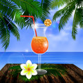 Tropical vector background