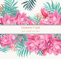 Tropical vector floral card or banner. Summerl template design with palm leaves and exotic flowers Royalty Free Stock Photo