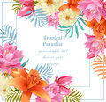 Tropical vector floral card. Summerl template design with palm leaves and exotic flowers Royalty Free Stock Photo