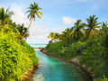 Tropical view with the palm scenery and stream going to ocean maldives Stock Photography