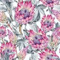 Tropical watercolor seamless pattern of protea flowers. Exotic pink bouquet, twigs and leaves