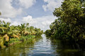 Tropical waterway an idyllic scene of a in kerala southern india Stock Images