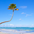 Tropical white sand beach and blue sky. Stock Photos