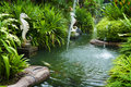 Tropical zen garden Royalty Free Stock Image