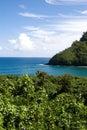Tropisch landschap (Maui, Hawa Stock Afbeelding
