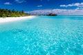Tropische Insel mit sandigem Strand mit Palmen Stockbild