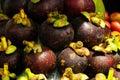 Tropisk frukt Fotografering för Bildbyråer