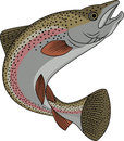 Trout fish cartoon Royalty Free Stock Photo
