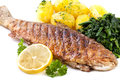 Trout Fried Royalty Free Stock Photo