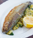 Trout has great flavor grilled good you don t need to add anything to Stock Photography
