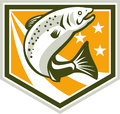 Trout jumping retro shield illustration of a fish set inside with stars and stripes marks done in style Stock Photography