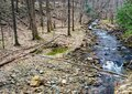 Trout Stream in the Blue Ridge Mountains Royalty Free Stock Photo