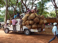 A truck crowded with people and baskets returns home orissa india nov after day at the weekly market on nov in orissa india Royalty Free Stock Images