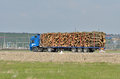 Truck with logs blue going on the road Royalty Free Stock Images