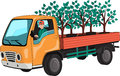 Truck with tree seedlings
