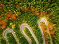 Truck winding up its way on a curvy road through autumn colored Royalty Free Stock Photo