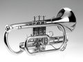Trumpet cornet on the gray and white background Royalty Free Stock Photos