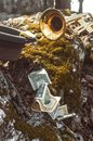 Trumpet Hat Money Royalty Free Stock Photo