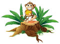 A trunk with a monkey holding bananas illustration of on white background Stock Image