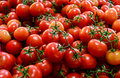 Truss tomatoes for sale Royalty Free Stock Photo