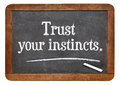 Trust your instincts advice or motivational reminder on a vintage slate blackboard Royalty Free Stock Images