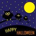 Trzy ślicznej sowy gwiaździsta noc i księżyc szczęśliwy hall Zdjęcie Royalty Free