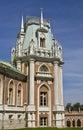 Tsaritsino palace, Moscow Stock Image