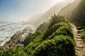 Tsitsikamma national park, Garden Route, Indian ocean, South Africa