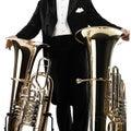 Tuba player brass instruments Royalty Free Stock Photo