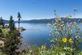 Tubs Hill, Coeur d' Alene Idaho Royalty Free Stock Photo