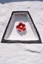 Tudor rose motif Royalty Free Stock Photo