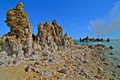 Tufa spires rising out of mono lake california usa Stock Images