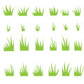 Tufts of grass. Royalty Free Stock Photo