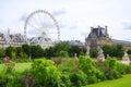 Tuileries garden side paris france Stock Images