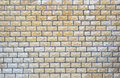 Tuiles boueuses de mur Photo stock