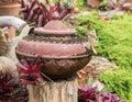 Tuindecoratie door aardewerkkruik aardewerkwaterkruik Stock Foto's