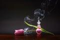 Tulip Aroma
