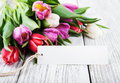 Tulip bouquet and blank  card Royalty Free Stock Photo