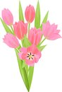 Tulip bouquet Royalty Free Stock Photo