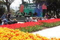Tulip festival, emirgan park istanbul turkey Royalty Free Stock Photo