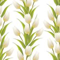 Tulip floral background seamless pattern vector illustration Royalty Free Stock Photos